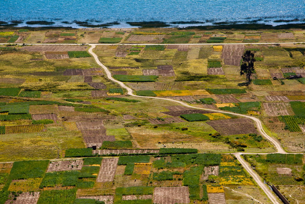Colorful tapestry of agricultural fields next to Lake Titicaca, Bolivia.