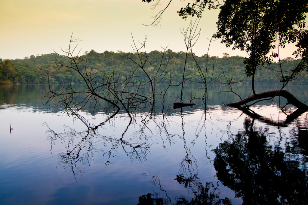 Reflections of nature at Chalalan Lodge in Madidi NP in Bolivia.