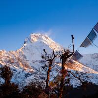 Nepal: Himalayan Giants & Lush Jungles (10 Days)